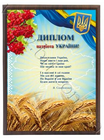Диплом патріоту України