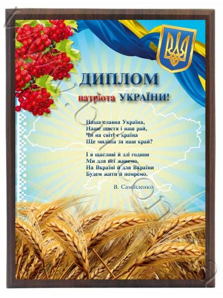 Диплом патріота України